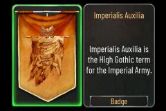 37 Imperialis Auxilia