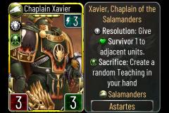 20 Chaplain Xavier (Salamanders)